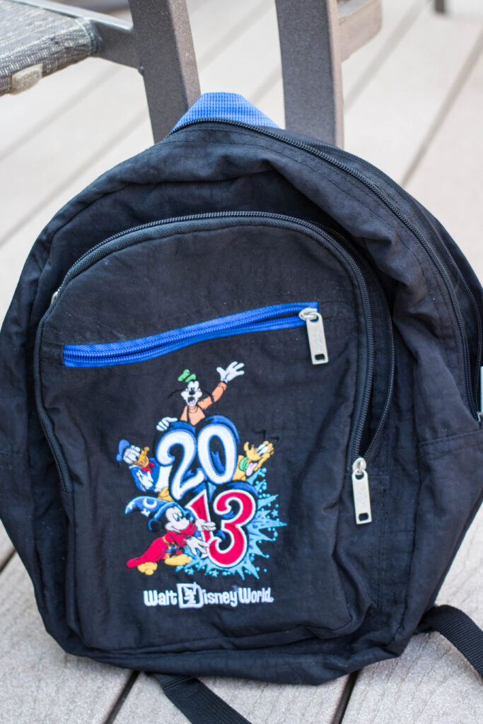 The backpack we purchased in 2013