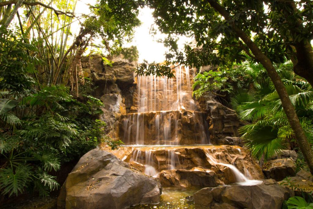Animal Kingdom Waterfall