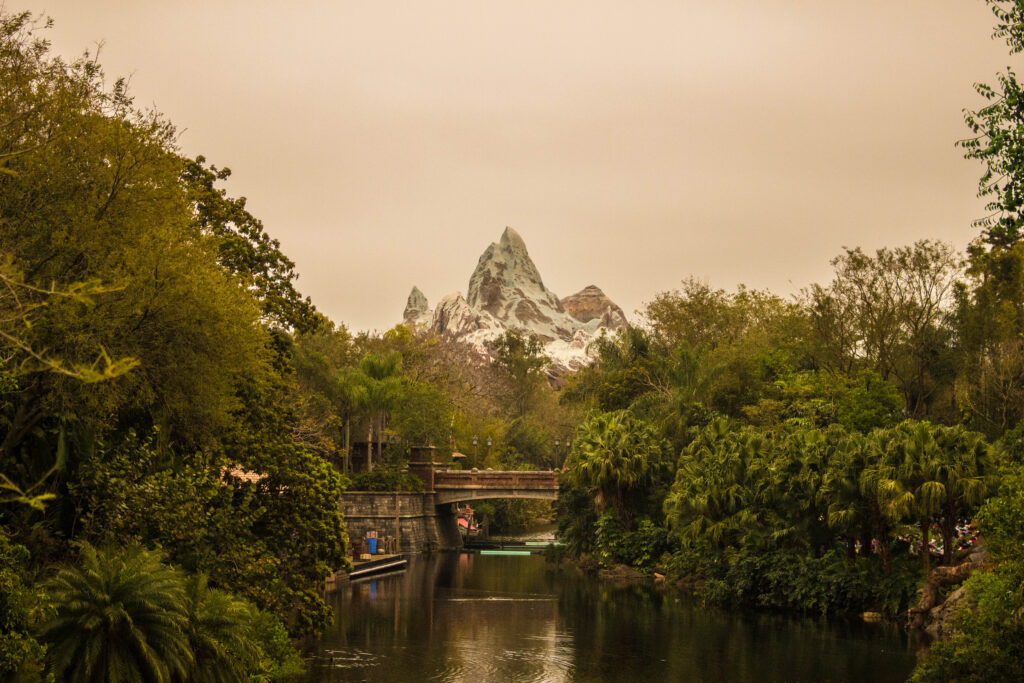 Expedition Everest Looms