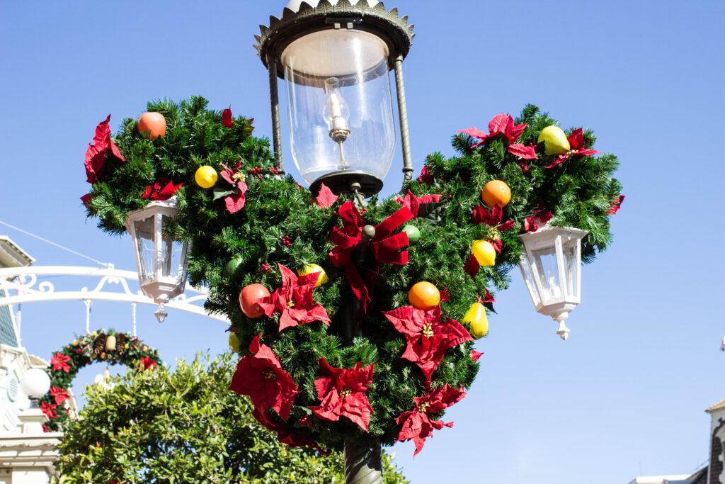 Winter at Walt Disney World