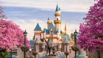 Disneymoon announcement