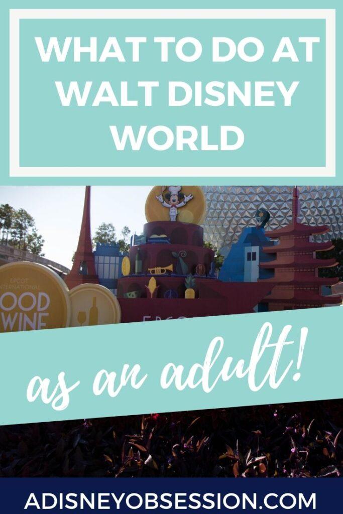 Walt Disney World as an adult
