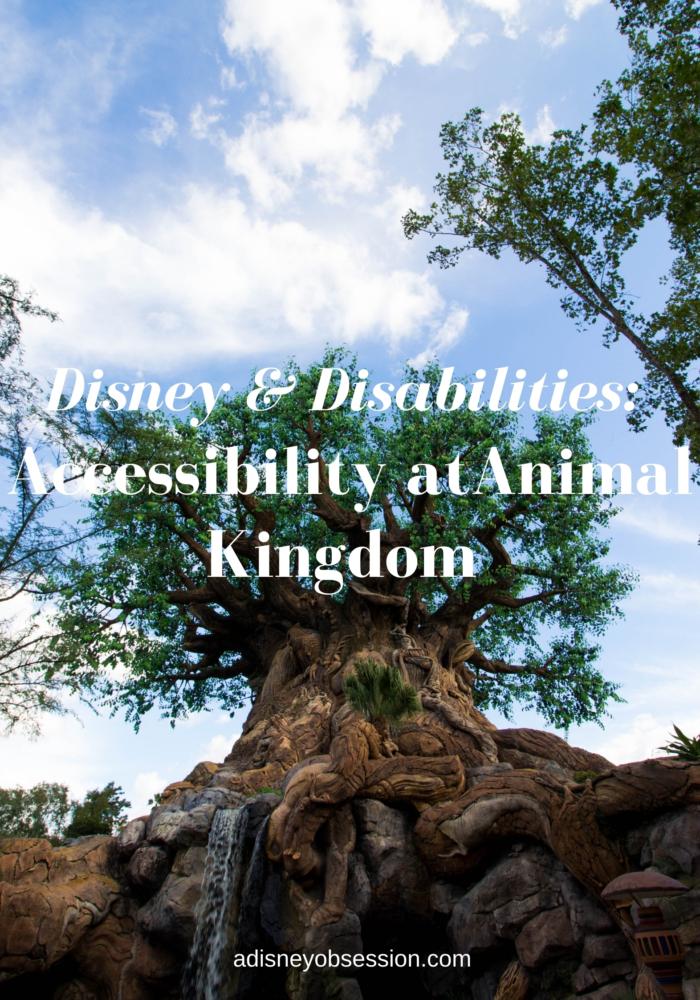 accessibility at animal kingdom
