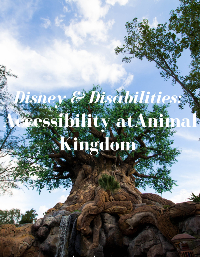 accessibility at animal kingdom