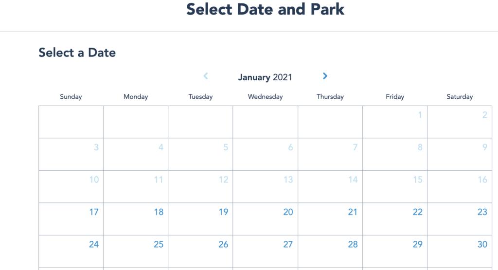 Disney Park Pass System